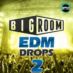 Big Room EDM Drops 2