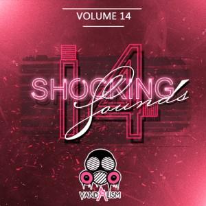 Shocking Sounds 14