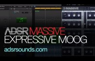 Create An Expressive EDM 'Moog Patch' in Massive