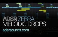 Design Melodic Drops With Zebra