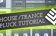 Designing an NI Massive Trance Pluck