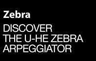 Discover The Great Zebra Arpeggiator