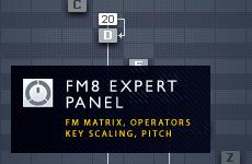 FM8 Expert Panel Explained