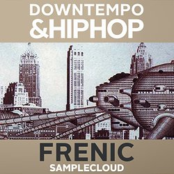 Downtempo & Hip Hop Frenic