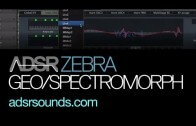 Get Custom Waveforms for Zebra