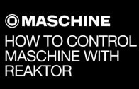 How to Control Maschine Instruments with Reaktor
