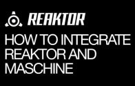 How to Integrate Reaktor and Maschine 2.0