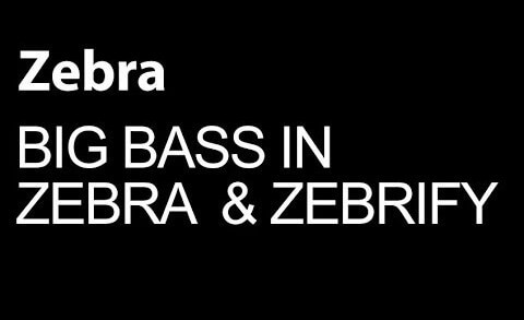 Make Big Bass Sounds With Zebra and Zebrify