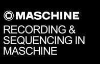 Techniques for Recording and Sequencing in Maschine