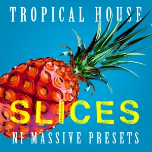 house presets for tropical house ni massive