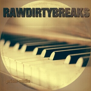 PrizmAudio-RawDirtyBreaksCover-600 copy