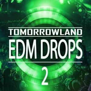 Tomorrowland EDM Drops 2 [600x600] copy