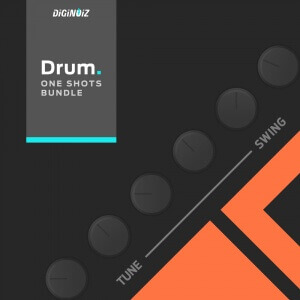 Diginoiz_-_Drum_One_Shots_Bundle_Cd