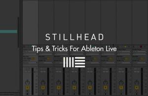 stillhead ableton live