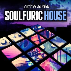 NICHESOULFURICHOUSE1000x1000