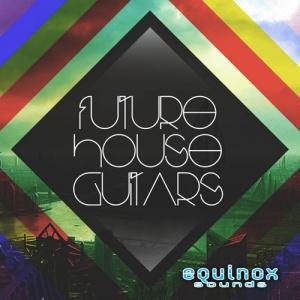 Future_House_Guitars_500
