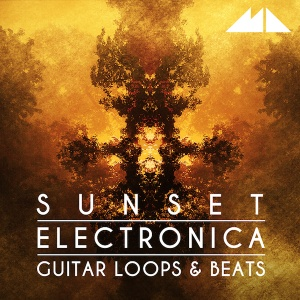 sunset_electronica_600