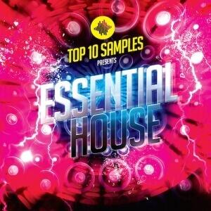 Essential House - Artwork copy 2