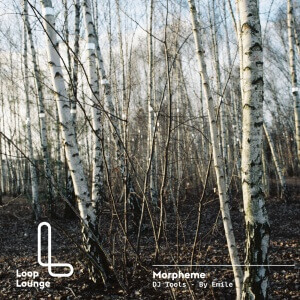 LLDT1502 - Morpheme - Cover