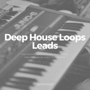 Loops.Directory - Deep House Loops - Leads