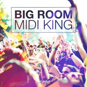 Diginoiz_-_Big_Room_Midi_King_Cd