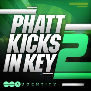 AUDENTITY PHAT KICKS IN KEY 2 1000 x 1000