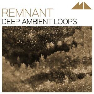 remnant_800