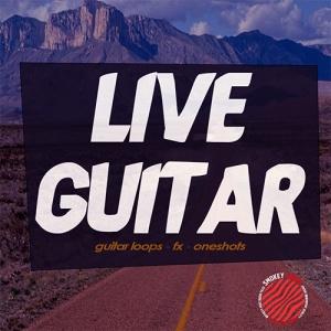 sml_live_guitar500