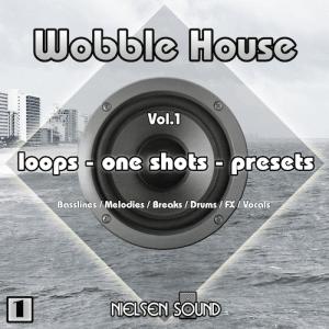 wobble house artwork