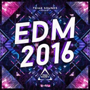 (40)TriadSounds_EDM2016