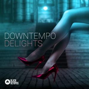 Downtempo Delights - Main Cover 1000 x 1000