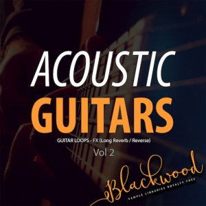 Acoustic Guitars 2 - Artwork