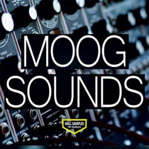Moog Sounds - Artwork