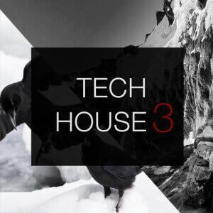 Spf-massive-tech-house-3-Art