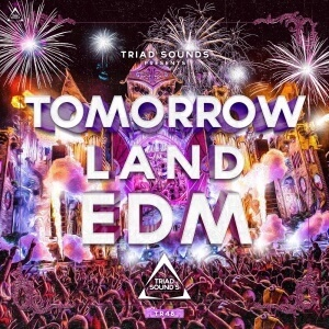 Tomorrowland EDM 2016 cover art(TR48)