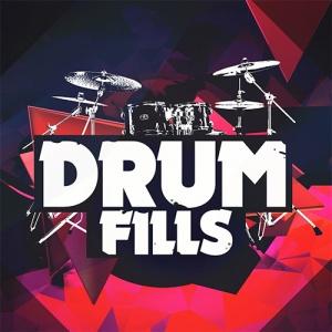 drum fills 500