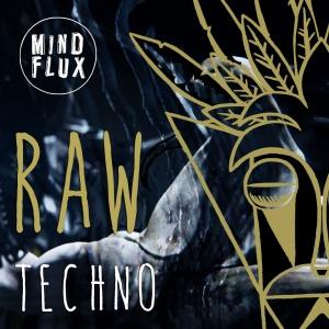mindflux 11