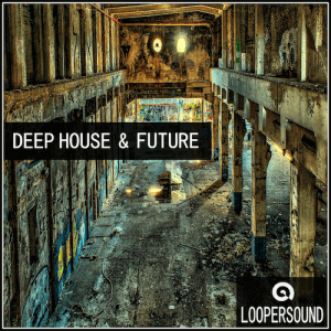 Deep House and Future - Artwork