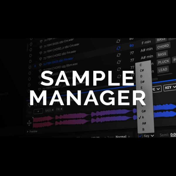 ADSR Sample Manager
