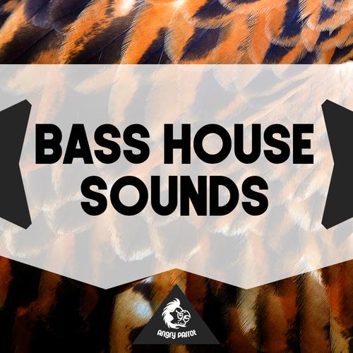 Bass House Sounds